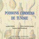 poisson_commun